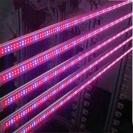 ФИТО лампа светодиодная тепличная Т8